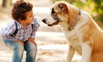Boy showing empathy and playing with his dog